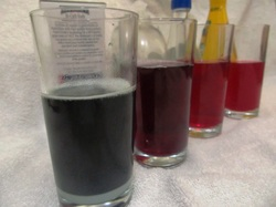 Red Cabbage Science Experiment3